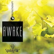 Aerospray Awake 250 ml
