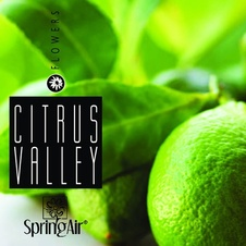 Aerospray Citrus Valley 250 ml