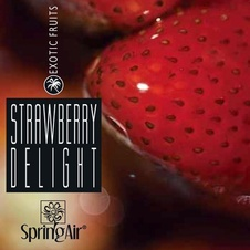 Aerospray  Strawberry Delight 250 ml