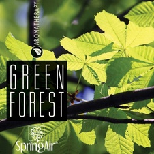 Aerospray Green Forest 250 ml